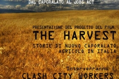 p_019_the_harvest