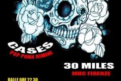 p_254_punk-hc_arkanoise_cases_30miles