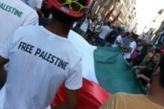 firenze_per_la_palestna_manifestazione_16_luglio_2014